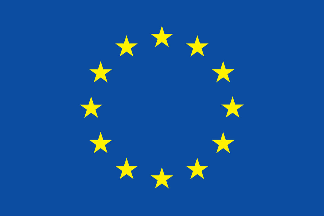 Delegation of the European Union